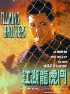 (1987) Dragon and Tiger Fight 江湖龙虎门 江湖龙虎门